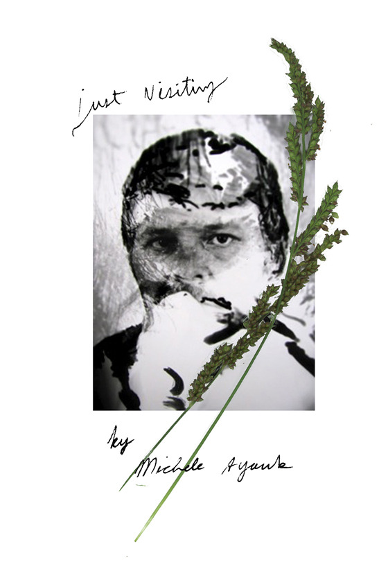 Michele Ayoub  3 days exhibit & special screenings  「Just Visiting」