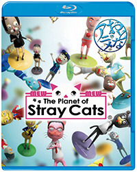 The Planet of Stray Cats